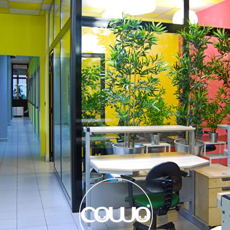 co-working-torino-bliss