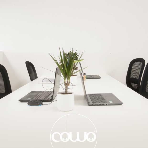 coworking-roma-ovest3